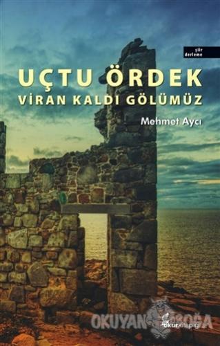 Uçtu Ördek Viran Kaldı Gölümüz - Mehmet Aycı - Okur Kitaplığı