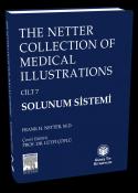 Solunum Sistemi (Cilt 7)