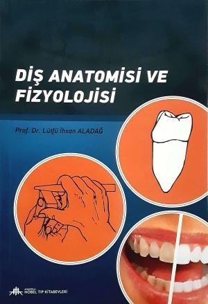 Diş Anatomisi ve Fizyolojisi