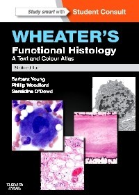 Functional Histology, 6th Edition