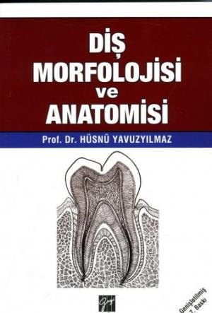 Diş Morfolojisi ve Anatomisi