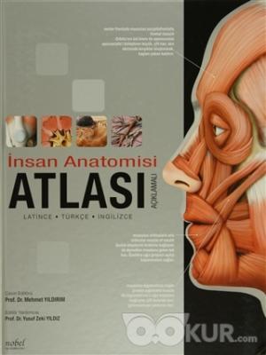İnsan Anatomisi Atlası (Açıklamalı) Latince - Türkçe - İngilizce (Ciltli)