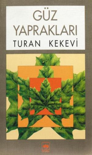 Ötüken Kitap | Güz Yaprakları Turan Kekevi