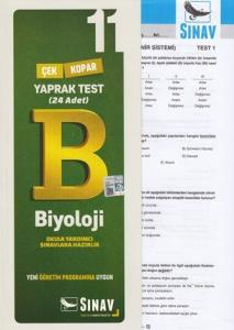 Sınav 11. Sınıf Biyoloji Çek Kopar Yaprak Test