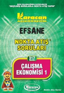 Karacan Çalışma Ekonomisi 1 - 317