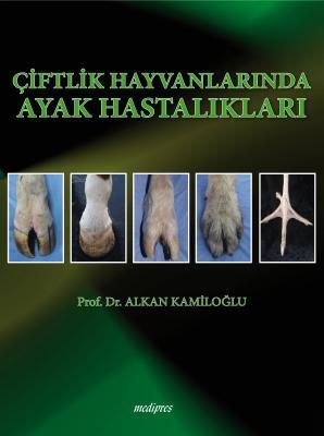Çiftlik Hayvanlarında Ayak Hastalıkları