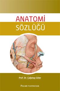 Palme Anatomi Sözlüğü - Çağatay Güler