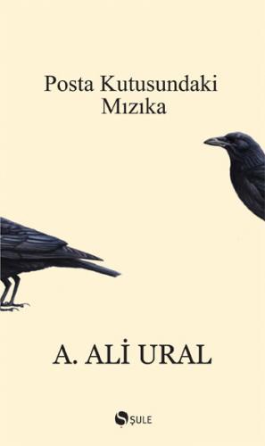 Posta Kutusundaki Mızıka - Ali Ural
