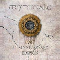 1987 (30th Anniversary Edition) (2 Plak)