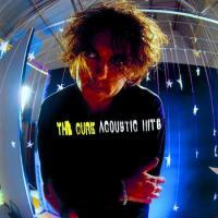 Acoustic Hits (2 Plak)
