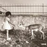 Ay Ana / Mother Moon (CD)