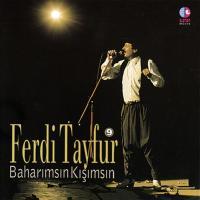 Baharımsın Kışımsın (CD)