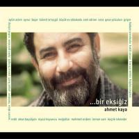 Bir Eksiğiz (2 CD)