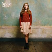 Birdy (Plak)