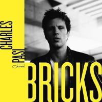 Bricks (Plak)