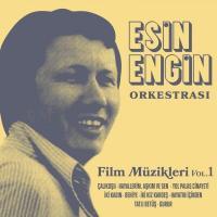 Film Müzikleri Vol.1 (2 Plak)