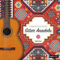 Gitar Anadolu Vol.1 (Plak)
