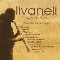 Livaneli Şarkıları (Enstrümantal) (Plak)