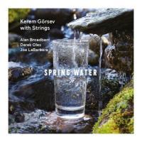 Spring Water (Plak)