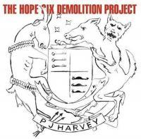 The Hope Six Demolition Project (Plak)