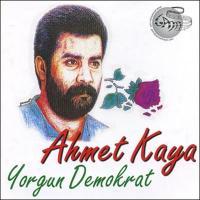 Yorgun Demokrat (CD)