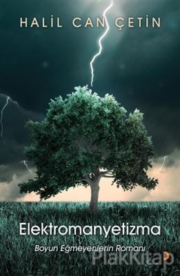 Elektromanyetizma Halil Can Çetin