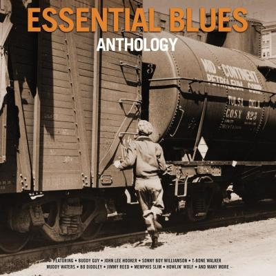 Essential Blues Anthology (2 Plak)