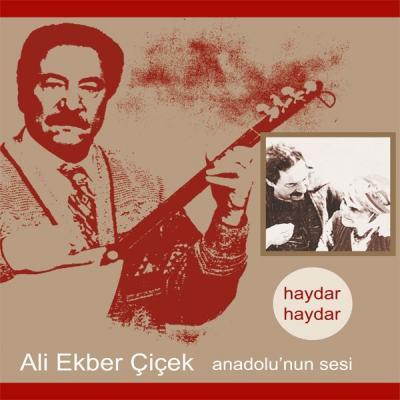 Anadolu'nun Sesi / Haydar Haydar (Plak)