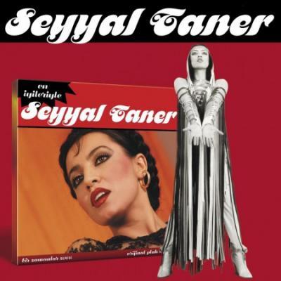 En İyileriyle Seyyal Taner (CD)