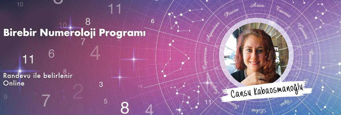 Birebir Numeroloji Programı