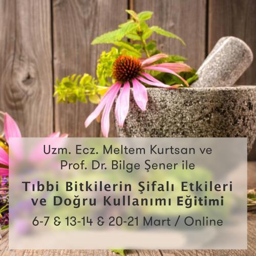 Tıbbi Bitkilerin Şifalı Etkileri ve Doğru Kullanımı Programı