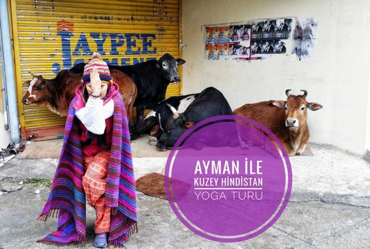 Ayman ile Kuzey Hindistan Yoga Turu Ayman Sozakbayeva