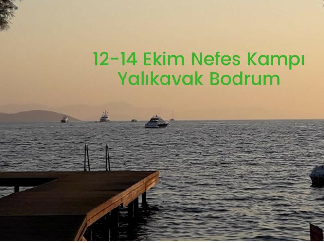 Bodrum'da Nefes Kampı Serap Özdağ