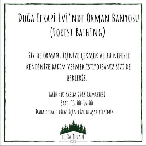 Doğa Terapi Evi'nde Orman Banyosu (Forest Bathing)