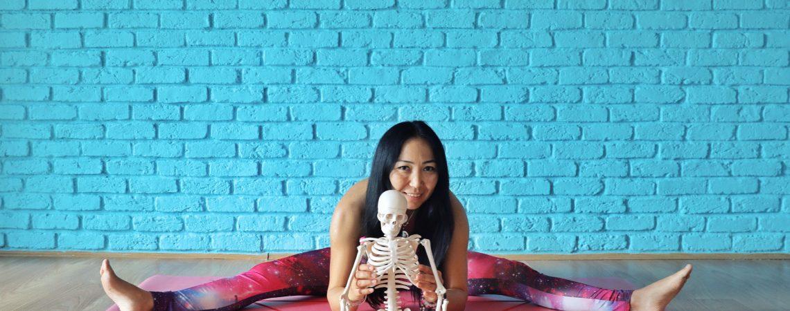Kas-İskelet Sistemi Yoga Terapi Eğitimi 50 Saatlik