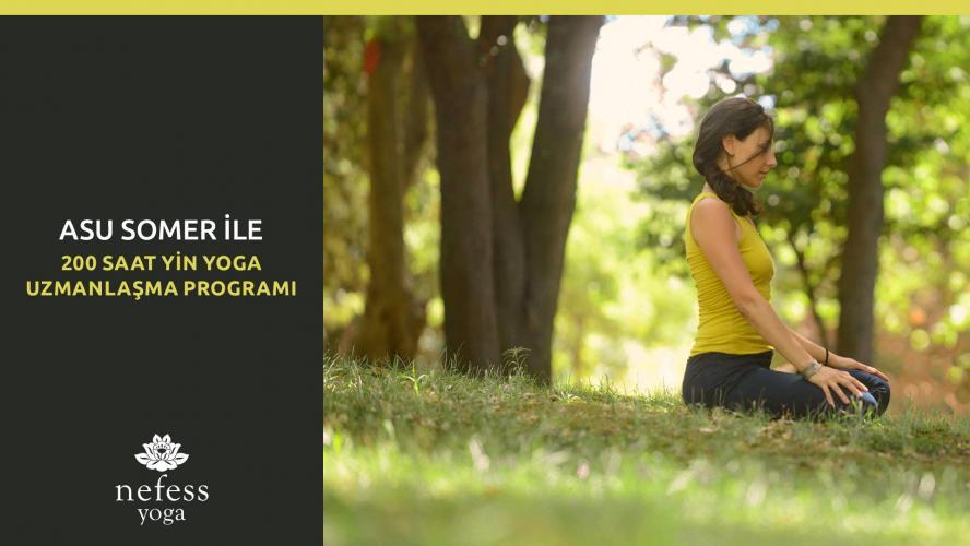 Yin Yoga Uzmanlaşma Programı  200 Saat