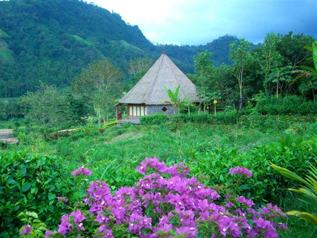 Faruk Kurtuluş ile Bali Endonezya Yoga Kampı