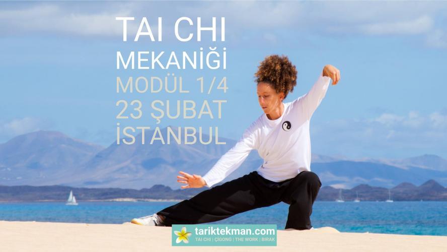 Tai Chi Mekaniği - 1. Modül