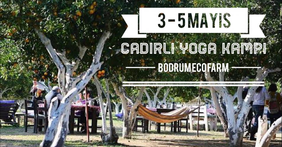 Çadırlı Yoga Kampı