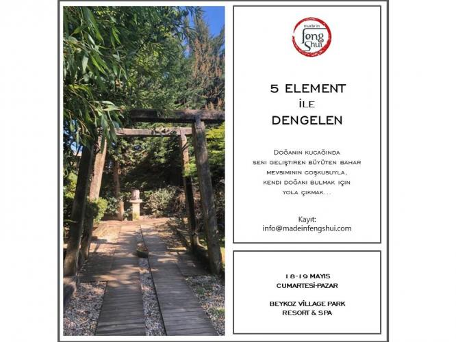 5 Element ile Dengelen