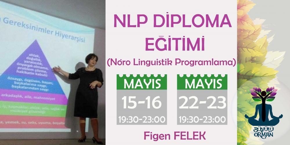 NLP Diploma Eğitimi ( Nöro Linguistik Programlama)
