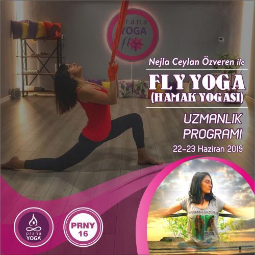 Fly (Hamak) Yoga Uzmanlık Programı