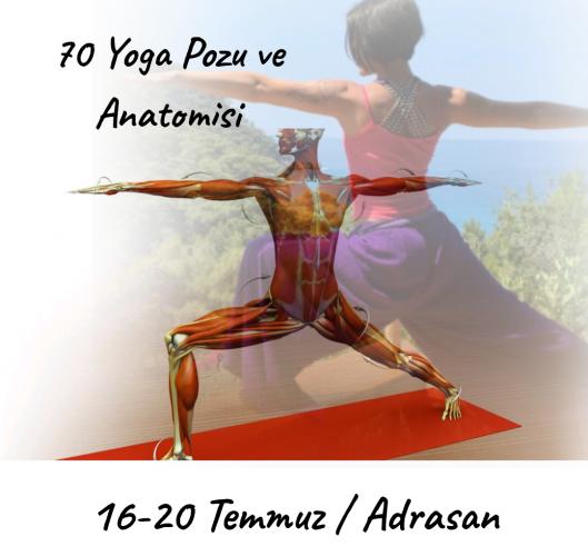Adrasan'da 70 Yoga Pozu, Hizalar ve Anatomi