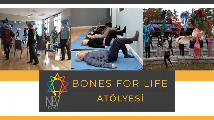 Movement Intelligence & Bones For Life Staj Dersleri !