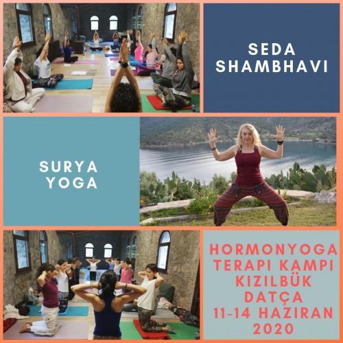 Hormon Yoga Uzmanlık Kampı 2. Seviye (Diabet)