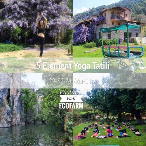Pastoral Vadi Ecofarm 5 element Yoga tatili
