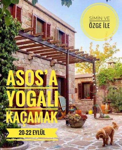 Asos'a Yogalı Kaçamak