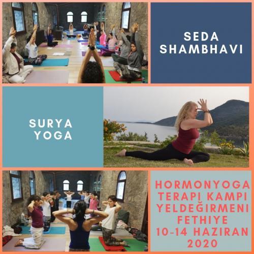 Hormon Yoga Uzmanlık Kampı 2. Seviye (Diabet) Seda Shambavi