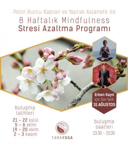 Pelin Burcu Kaplan ve Yaprak Aslanefe ile 8 Haftalık Mindfulness Stresi Azaltma Programı