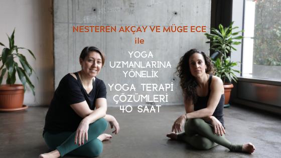 Yoga Uzmanları için Yoga Terapi Çözümleri - 40 Saat